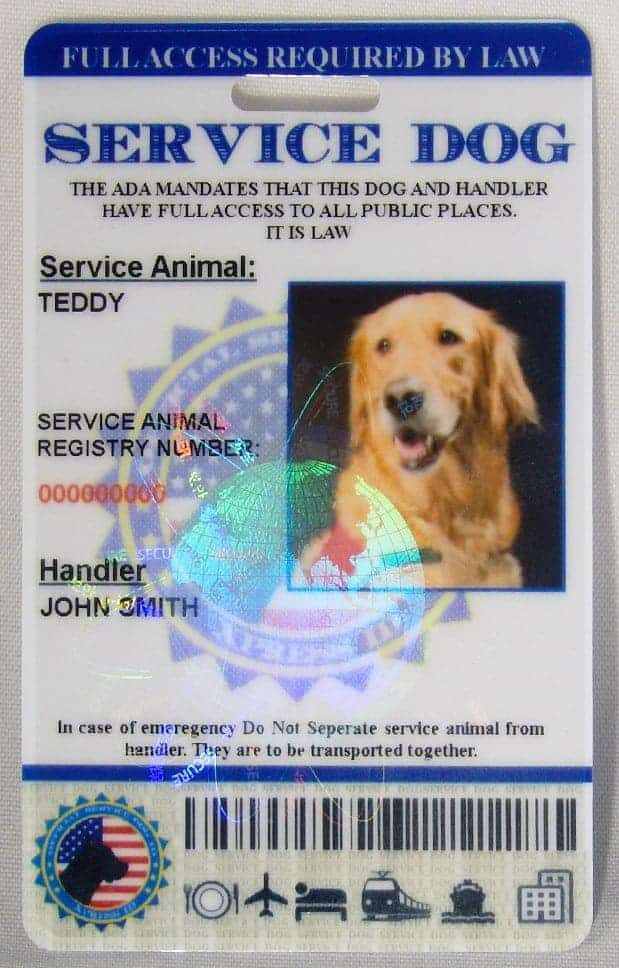 Service Dog Id Card Free Access To Animal Registry