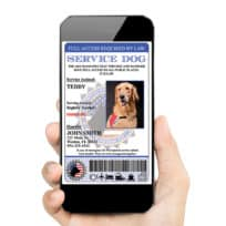 Digital Service dog id tag