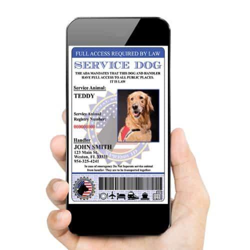 Digital Service dog id tag