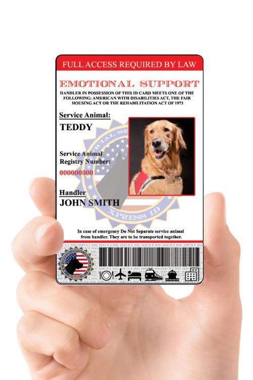 Emotional Support Animal ID card in hands