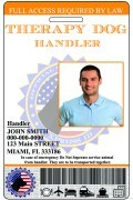 THERAPY HANDLER ID