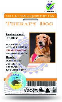 HOLO Therapy Dog ID TSA